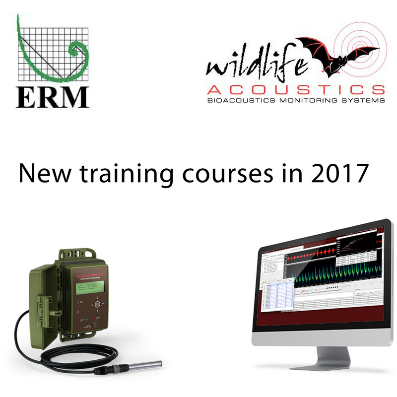 We're partnering with ERM to provide bat acoustics training courses