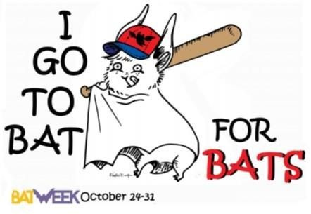 Bat Week 2017: 5 Fun Ways to Get Involved