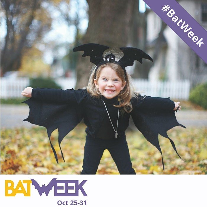 Bat Week 2015 takes on a Guinness World Record Attempt and Capitol Hill!