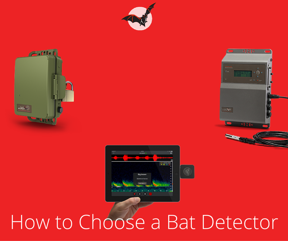 How to choose a bat detector