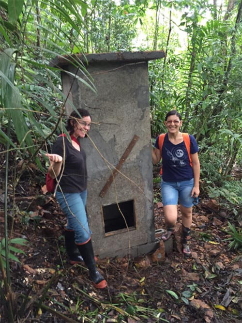 Effectiveness of artificial roosts for Neotropical bat species