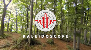 Kaleidoscope Analysis Software