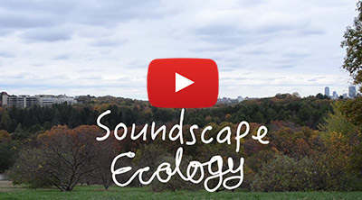 Soundscape Ecology Video