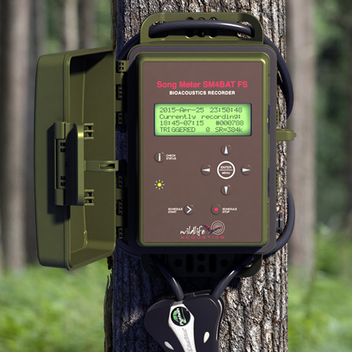 Wildlife Acoustics Song Meter SM4BAT Ultrasonic Recorder