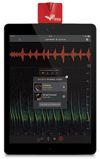 Echo Meter Touch 2 PRO