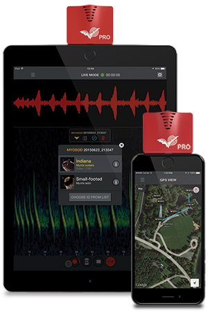 Echo Meter Touch 2 PRO Handheld bat detector for Android and iOS devices