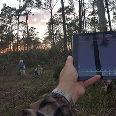 Wildlife Acoustics Solutions