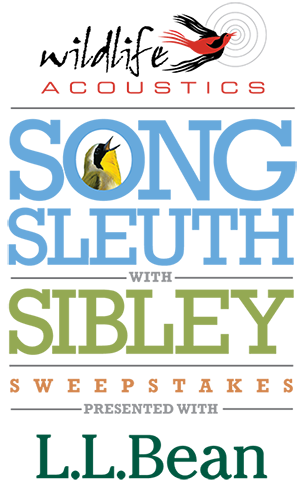 Enter to win the Song Sleuth with Sibley Sweepstakes